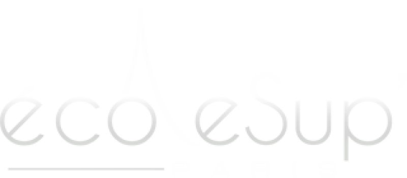 ecole-sup-paris-logo